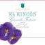 Marques de Grinon 2015 El Rincon Roble