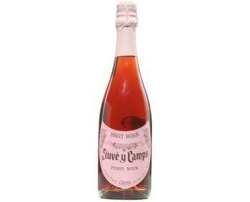 Juvé Y Camps Rosé Brut Cava NV